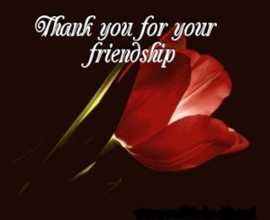 Friendship-Rocks-true-buddies-23370803-549-448