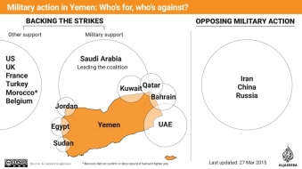 For and Against Yemen operation