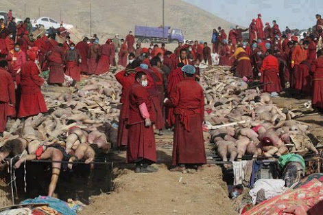 Rohingya massacre surrounded by the Buddhists who massacred them